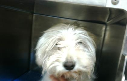 34934608 located in El Paso, TX has an unknown status at ...
